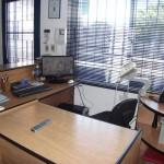 oficina networking team (5)